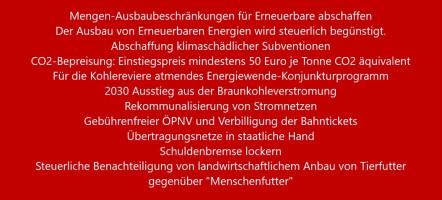 Karl Lauterbach - Nina Scheer - Ziele